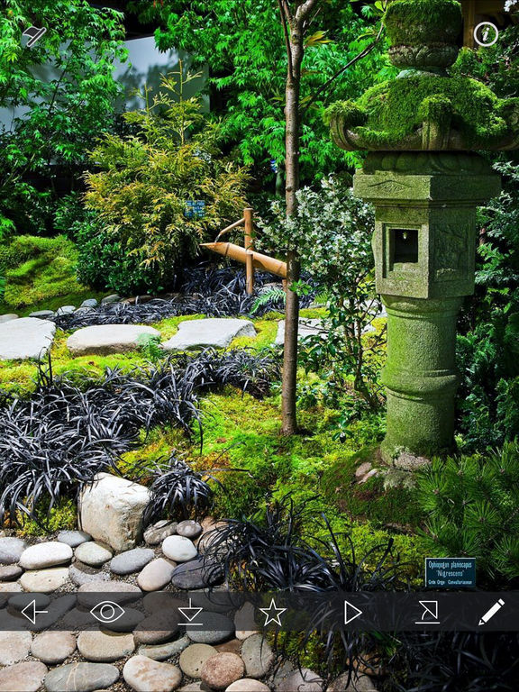 Zen Japanese Garden Ideas Garden Interior Design On The App Store