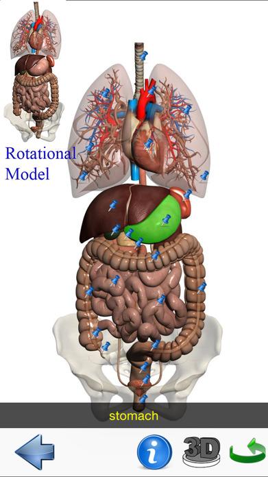 Visual Anatomy Lite Screenshot