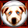 Dave's Crystal Ball – lite version Icon