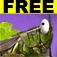Squashabug! FREE Icon