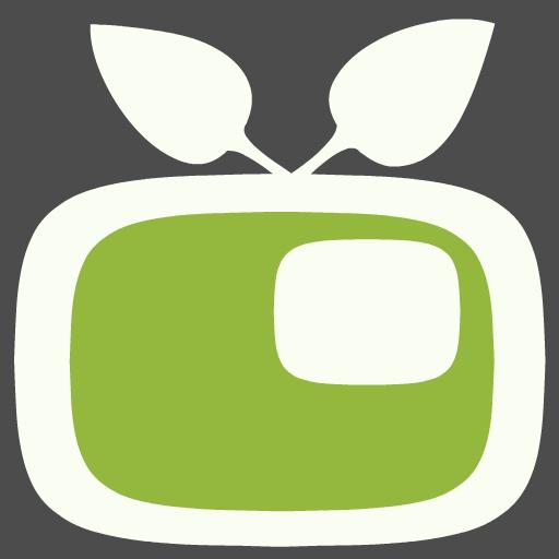 Video in Video