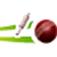 Cricket Companion V1.2 Icon