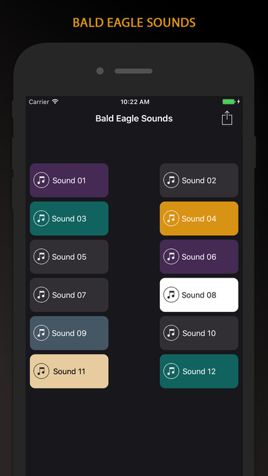 bald eagle sounds app download android apk. Black Bedroom Furniture Sets. Home Design Ideas