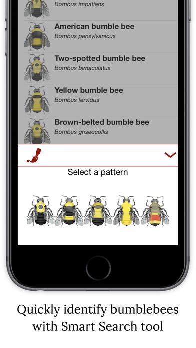 bumble app download