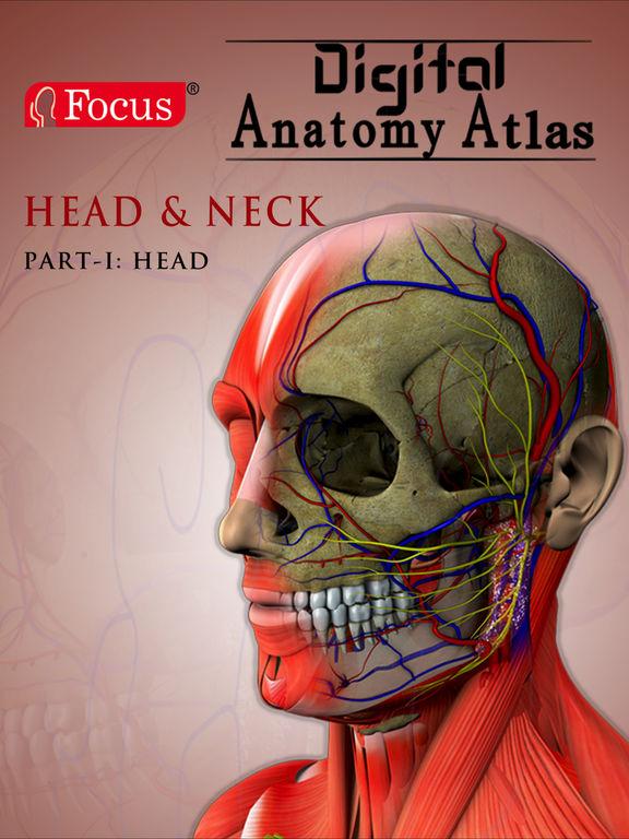 App Shopper: Head and Neck - The Focus Digital Anatomy ...