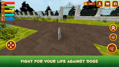 House Cat Life Simulator 3D App Report on Mobile Action