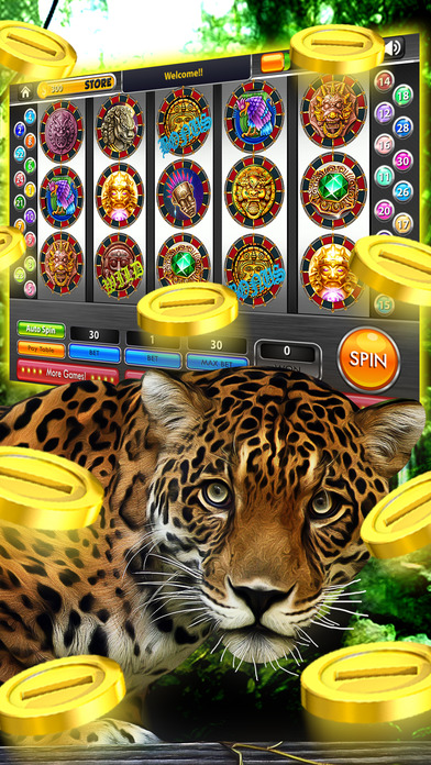 Fiesta Casino Buffet - Malibuwear Slot Machine