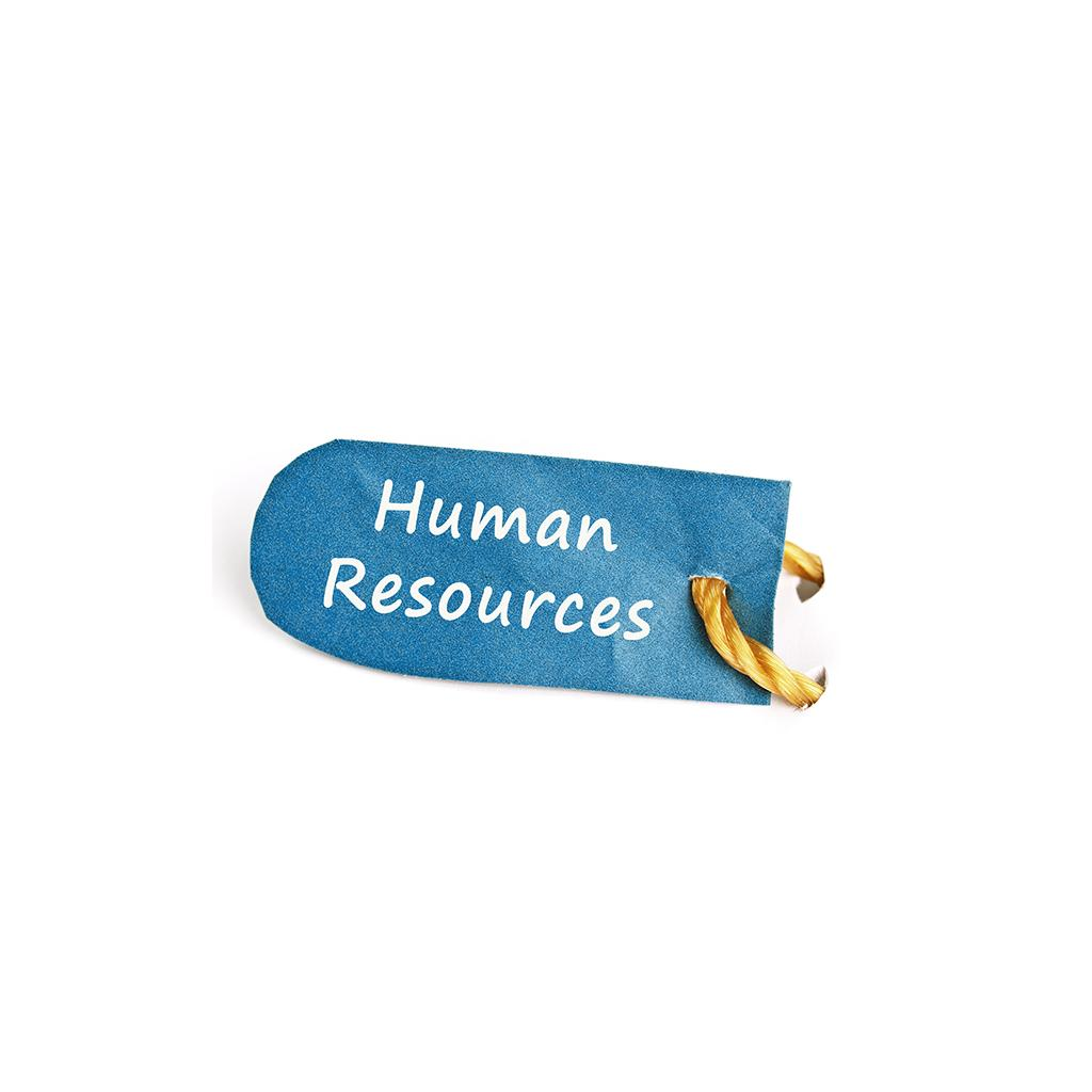 Sphr Certification 3000 Questions Senior Professional In Human