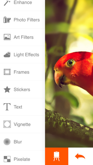 Phoenix Pro Photo Editor Screenshot
